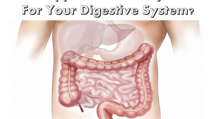 Are Supplements Really Good For Your Digestive System
