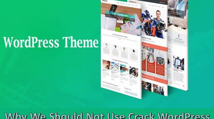 Why We Should Not Use Crack WordPress Theme