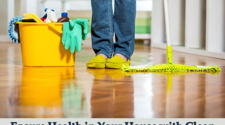 Ensure Health in Your House with Clean FloorEnsure Health in Your House with Clean Floor