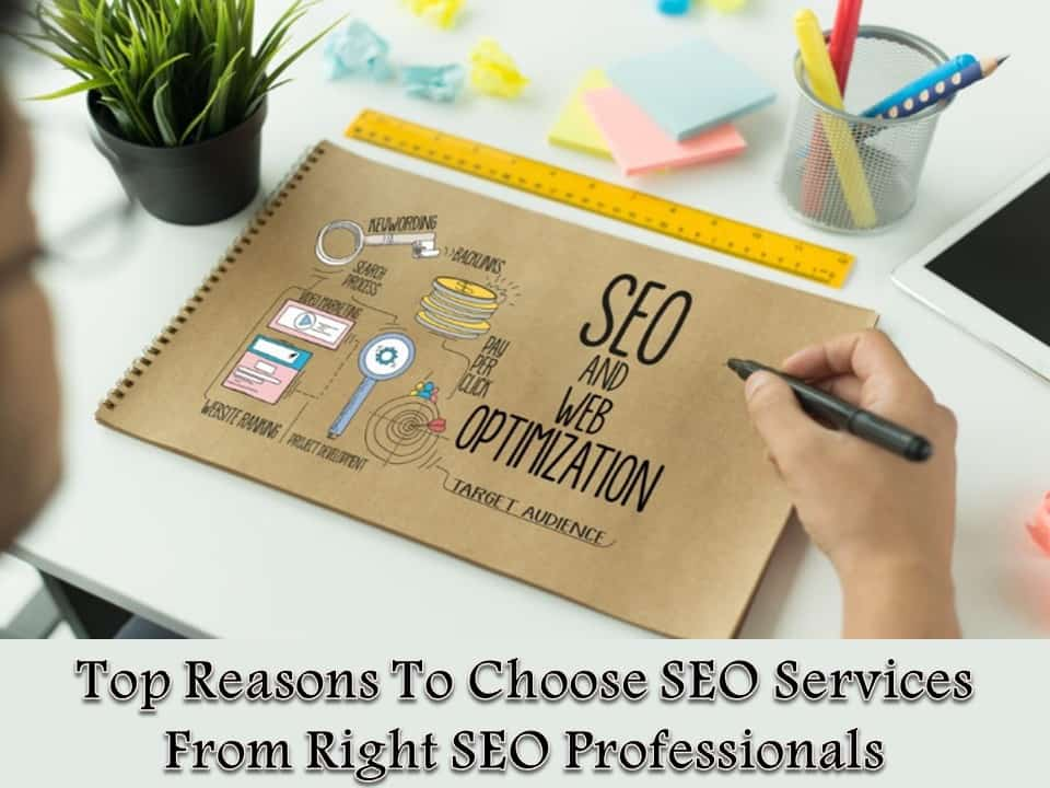 Top Reasons To Choose SEO Services From Right SEO Professionals
