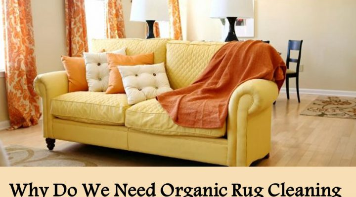 Why Do We Need Organic Rug Cleaning At Home