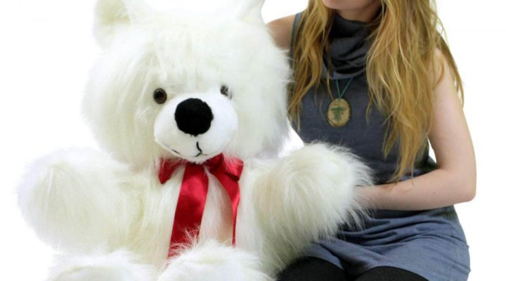 6 Reasons for gifting teddy bear on the Valentine's Day