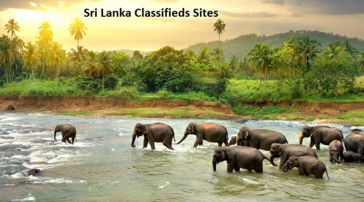 free Classified Sites in Srilanka