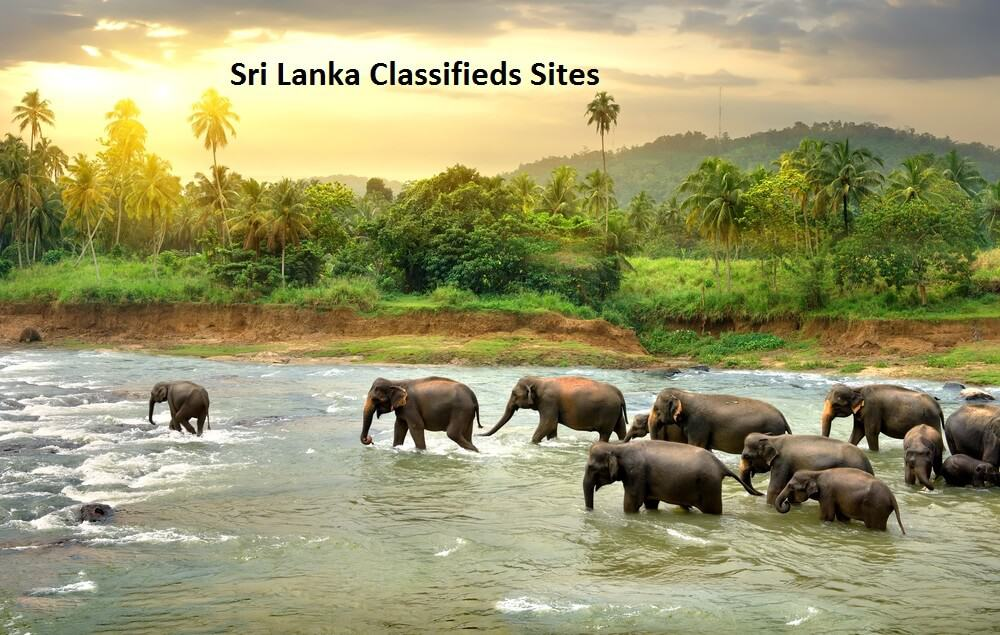free Classified Sites in Srilanka