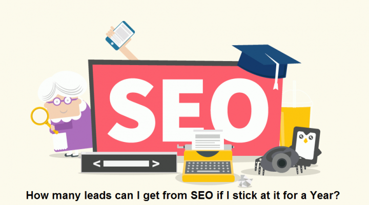 How many leads can I get from SEO if I stick at it for a Year