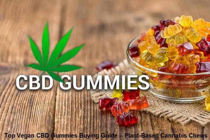Top Vegan CBD Gummies Buying Guide – Plant-Based Cannabis Chews