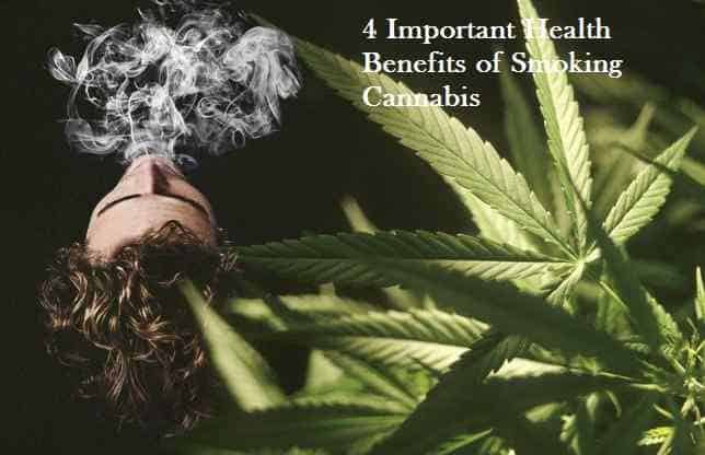 4 Important Health Benefits of Smoking Cannabis