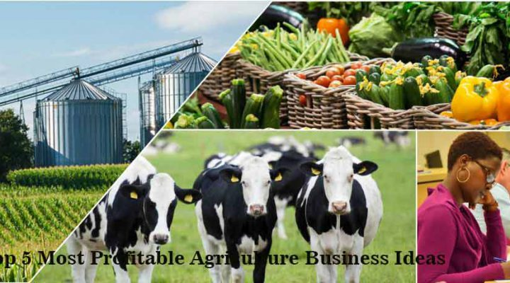 Profitable Agriculture Business