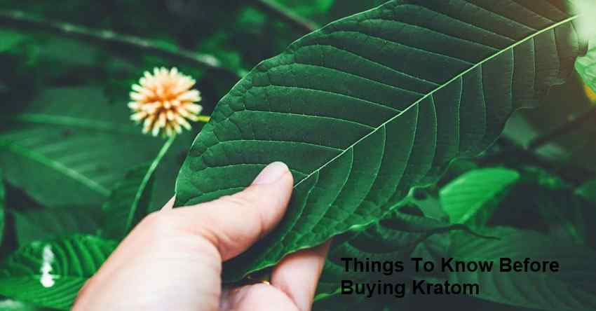Things To Know Before Buying Kratom