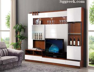 Designs of Sofa and TV Stand